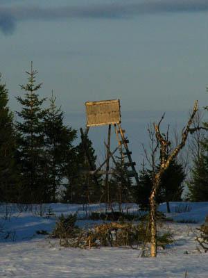 Här kommer en bild på ett älgtorn som står på Edsåsen utanför Undersåker i Åre kommun. Vänliga hälsningar, Anders Nylén, Undersåker.