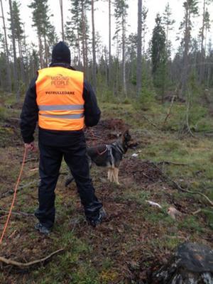 Missing people i Gävleborg har bland annat anordnat en skallgång för att leta efter en försvunnen kvinna i Gävle.