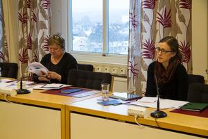 Linnea Hedkvist, folkhälsostrateg, Lindesbergs kommun och Cecilia Andersson, utredare, Fagersta kommun. Projektet har en budget på 200 000 kronor och kommer till hösten att ha ett större lärseminarium.