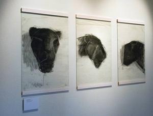 Kolteckningar av Camilla Bergman.