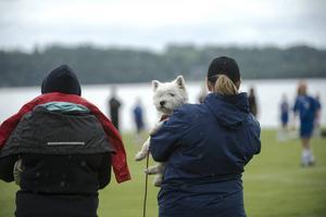 Den 13-åriga hunden Blondie var måttligt road av vad som föregick på planerna.
