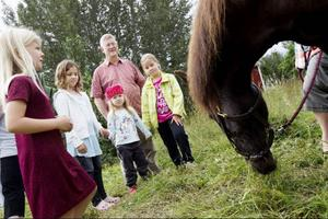 Noa, Matilda, Hanna och Fanny kollade in ponnyridningen.