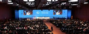 I dag, 26 november, har FN:s klimatmöte i Qatars huvudstad Doha inletts.