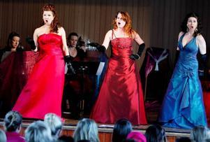 Camilla Karlsson, Anna Brandt och Angelika Lindahl är tre självsäkra sångerskor som vet hur en publik ska tas. För stabilt ackompanjemang står Anna Lundström vid pianot och cellisten Katarina Åhlén. På fredagen var det turnépremiär i Ås.