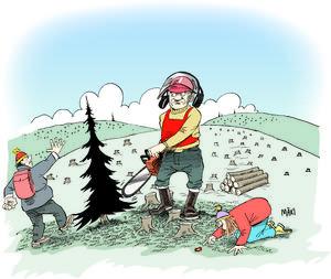 Vem har rätt till skogen? Skogsägaren som köpt den för att bruka sin mark eller naturintresserade som vill ha orörd skog där rödlistade arter kan leva i fred och frihet?