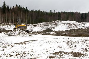 Ett köpcentrum vid Medskog kan få allvarliga konsekvenser för Ljusdals handel, enligt flera lokala företagare.
