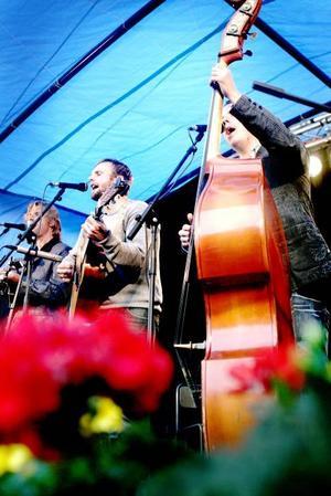 Downhill. Ett givet band på Torsåkers Bluegrassfestival.