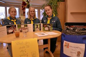 Sjöängsskolan och EFS-kyrkans scout- och tonårsgrupp har samlat in pantburkar och pengar till brunnar i Colombia. På bilden Lovisa Jerlström, Magdalena Jerlström och Annie Östlund.