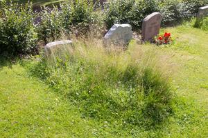 Oklippta gravplatser på Östra kyrkogården i Norberg beror på ändrad lagstiftning från och med 2014 och att de anhöriga inte tecknat gravvårdsavtal med församlingen.