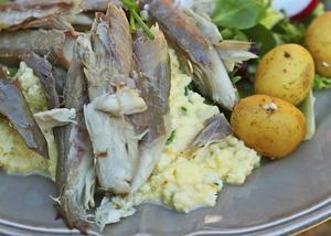 Sommarklassiker – äggröra med rökt makrill, blad och färskpotatis.   Dan Strandqvist