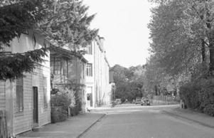 Täppgatan i Södertälje var ännu under 1950-talet en gata som motsvarade sitt namn. Där fanns rik växtlighet inne på de stora trädgårdarna. Det fanns dock stora hus som bröt sig ur denna ganska lantliga miljö. I bildens vänstra del ser vi gamla hus från slutet av 1800-talet. Förhållandena var liknande utmed resten av Täppgatan. Först under slutet av 1950-talet började nya, moderna hyreshus att byggas och under 1960-talet skedde stora förändringar i husbeståndet.