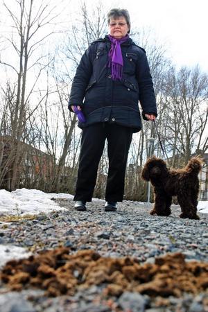 Inger Medin är irriterad över all hundskit som ligger på gångvägar och trottarer i Fjugesta.