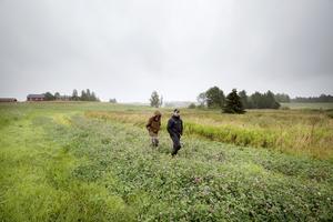 Gustav Löfstrand och grannen Tommie Synneby går runt den yta som kan bli ny våtmark.
