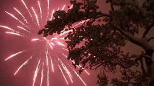 Gott nytt år önskar LT!