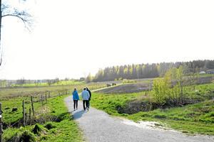 Naturskön vandring. En strid ström av lindesbergare vandrade den cirka sju kilometer långa sträckan runt sjön.