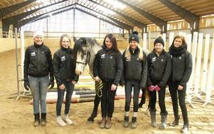 Borlänges elitlag. Från vänster ser vi coachen Terese Jons, Ella Nilsén som rider D-ponnyn Shade, Caroline Lunden som rider D-ponnyn Rebecka, Elsa Berggren som rider C-ponnyn Pedro, Linnea Grufman som rider B-ponnyn Mazarine och Emma Holmberg som rider C-ponnyn Tamaguchie. Med på bilden är också C-ponnyn Fuego som fortfarande är hingst.Foto: OLOF ASPELIN