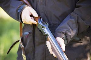 Jägarexamen består av både teoriprov och skytteprov. För att få jaga älg måste man skjuta tre godkända serier varje år.
