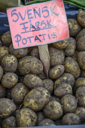 Kommunala potatisodlingar är inte vad Örnsköldsvik behöver.