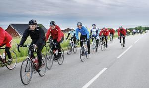 En hel drös med cyklister börjar närma sig Gränna.