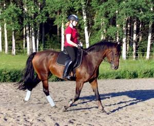 HADE EGEN HÄST. I början av tiden på Plönningegymnasiet utanför Halmstad hade Tilly Ottemark häst i ett privatstall nära skolan, men det sista året har hon varit utan. Här rider hon på Sammi.