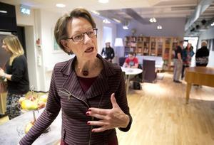 """Alla nästan 70 lokalorganisationer av Feministiskt Initiativ ska få besök innan nyår, lovar Gudrun Schyman. """"Rösterna på oss i valet var inte bortkastade. De ger oss ett betydligt bättre utgångsläge inför 2018""""."""
