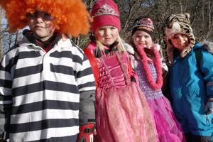 Sebastian Mellström, Engla Gradin, Vilma Blomberg och Rewan Miran hade klätt sig som clown, prinsessor och en tiger. Under dagen hade de bland annat fått pussel, Festis, nalle och blomlökar när de gick runt i centrala Alfta.