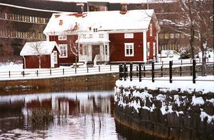 Under fem år har insamlingen av julgranar resulterat i fjärrvärme och el fö r 49 600 kronor till Ria-stugan.