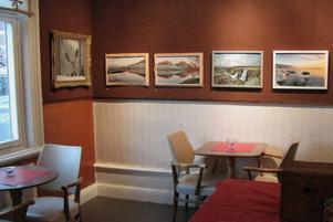 Just nu pågår utställningen Naturfoto med 16 bilder av Börje Wallgren, Valbo på Galleri Mazarin i Rådhuskonditoriet i Söderhamn.