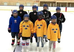 Övre från vänster: Julia Forsgren, Hanna Roos, Johanna Gabrielsson och Maja Ålenius. Nedre från vänster: Vera Jansson, Lovisa Englund, Khadija Goudiaby och Peyton Söderqvist.