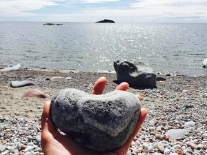 Hjärtformad sten på Trysunda.