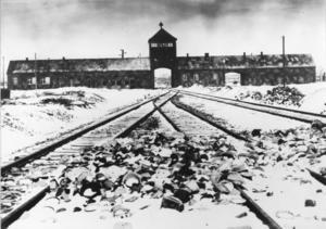 En bild från Auschwitz-Birkenau i Polen 1945.