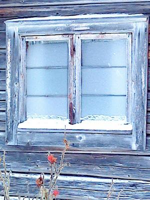 Hittade detta frostiga fönster på ett gammalt härbre i Tällberg.Det kalla blå står i kontrast till den röda växten framför huset.