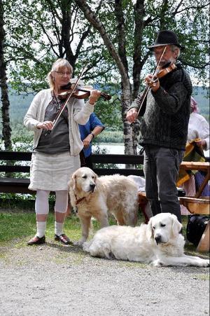 Mårten och Lena Hellqvist spelade visor tillsammans med deras hundar.