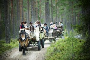 Tre ekipage färdades under torsdagseftermiddagen längs grusvägarna i finnmarkens skogar.