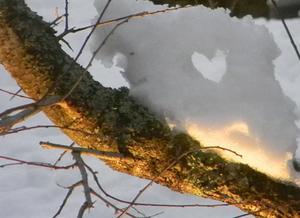 Jag såg ett hål i snön, det var inte ett hjärta men nästan, så jag formade till de lite grann och tog foto när trädgårdslamporna hade tänts.