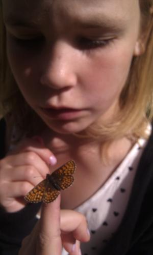Kärt barnbarn har god hand med fjärilar!