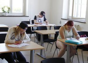 Koncentration under matematikstudierna på sommarskolan i Vivsta gamla skola i Timrå.