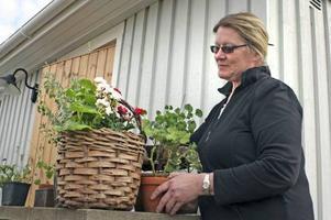 Maria Slåtterman har hållit många föreläsningar om pelargoner genom åren. Här pysslar hon om några blommor vid sin bostad utanför Örebro.
