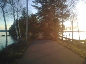 Vid Roxnäs udde i Falun när stormen drog förbi.