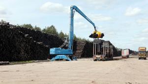 Lastbilarna kommer och går på Byholma, där en stor kran lastar på virke.