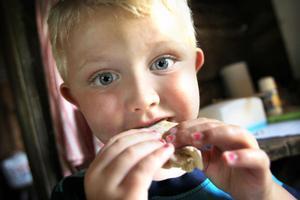 Gustav Widell, 3,5 år, Sollentuna, hälsade på farmor och farfar och fick chansen att baka sina egna glödhoppor i bagarstugan på Forsa Forngård.
