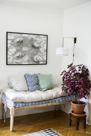"""Favoritväxten är palettblad vars blad kan ha flera olika färger. Den stora i vardagsrummet har Johanna skött åt en vän över sommaren. Dagbädd och dynor kommer från Ellos och vägglampan från Marsklöjd. Tavlan """"Stäpphöna"""" har svenska Emma von Brömssen gjort och hon är en av Johannas favoritdesigners."""