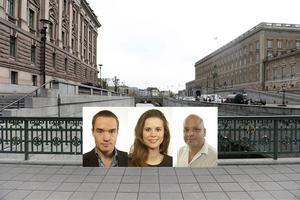 Kent Ekeroth, Hillevi Larsson och Daniel Sestrajcic är tre ledamöter som behöver fundera över i vilka sammanhang de medverkar i.