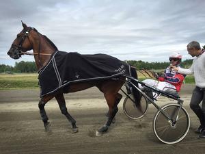 Den främsta travare som besökt Ovikens travbana, mångmiljonären Sanity, gjorde inte de 130 delägarna besvikna. Det blev enkel seger i V4-2. I sulkyn Ulf Eriksson.