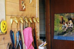 I dag driver Annika Wengelin stallet på heltid, där barn i åldern två till tolv år får rida på ponny- och islandshästar.