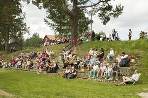 Runt 200 personer kom till firandet i Färila.