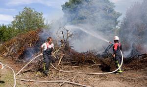 Vid lunchtid på måndagen kämpade brandkåren mot lågorna.