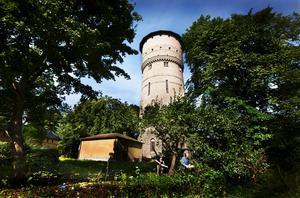 Drar i gång. Södra vattentornet vid Gustavsvik ska byggas om och bli kontor. I förgrunden syns Bosse Karlsson och Bengt Grafver som röjer träd och buskar.