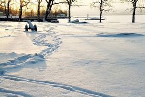 Visst är det vackert när den vita snön lyses upp av solens strålar. Men tyvärr får vi inte ens ljuta av solens strålar ens en hel arbetsdag, åtta timmar, inte än i alla fall.