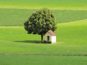 Mitt i grönskan stod det lilla lilla kapellet